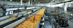 طرح توجیهی تولید چیپس ظرفیت: 500 تن در سال